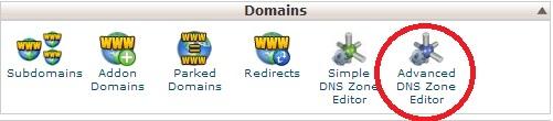 Advanced DNS Zone editor in cpanel